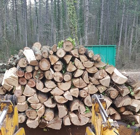 entreprise de vente de bois de chauffage à alès